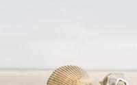 Керамическая плитка Голден Тайл Саммер Стоун декор тип 1