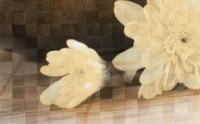 Керамическая плитка Голден Тайл Бали декор тип 2