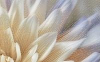 Керамическая плитка Голден Тайл Фиори декор тип 3