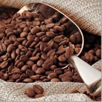 Керамическая плитка Нефрит Акварель декор кофе 2
