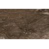 Керамическая плитка Голден Тайл Сакура коричневый настенная