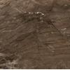 Керамическая плитка Голден Тайл Сакура коричневый напольная