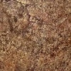 Керамическая плитка Kerama Marazzi Элегия коричневый (4152)
