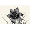 Керамическая плитка Нефрит Пиано чёрный декор 01