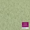 Гомогенный линолеум Tarkett IQ Granit 3040 426 (3243 426) зелёный